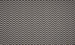 zigzag qjutie zwart wit