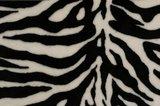 zebra wellness
