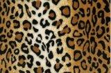 luipaard groot wellness