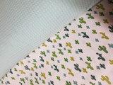Swessie groene kaktus met mint groene wafel