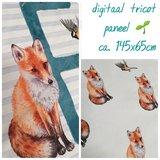 fox paneel
