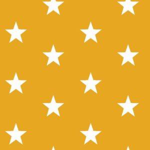 geel wit flinke ster
