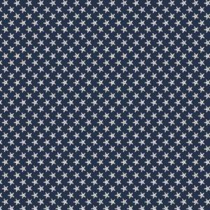 donker blauw wit zeester - Maritiem