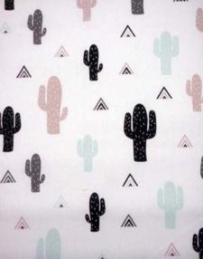 pastel kaktus
