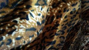 bruin-cognac-wit luipaard - kortharig