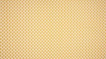 geel (oker) blaadjes / veertjes