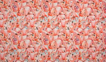 roze flamingo's digitaal  - tricot