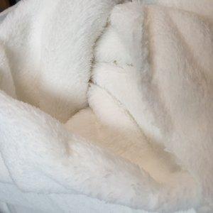 teddy fleece - wellness teddy