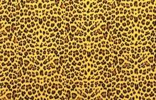hydrofiel luipaard oker